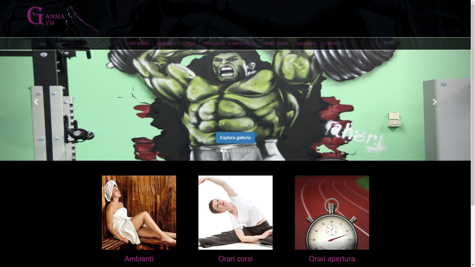 Mk Computers - Assistenza PC e Siti Web Caselle Torinese - Gamma Gym Home Page